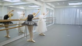 Beautiful ballerinas practice near barre in ballet studio. Young ladies stand and hold onto bar and raise one hand, arching slim body back. Two dancers dressed stock video footage