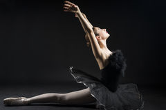 Beautiful ballet dancer. Beautiful expressive ballerina in the role of a black swan, wearing black tutu and pointe shoes on black background Stock Photography