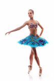 Beautiful ballet dancer isolated Royalty Free Stock Photos