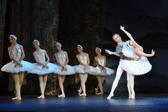 BEAUTIFUL BALLET DANCERS Stock Photography