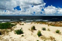 Beautiful baltic dunes Stock Images