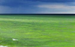 Beautiful Baltic Sea near Sopot in Poland. The beautiful Baltic Sea near Sopot in Poland stock images