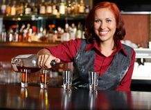Beautiful barmaid Stock Image