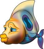 Beautiful barrier fish stock illustration