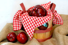 Beautiful Basket of Apples Royalty Free Stock Images