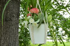 Beautiful basket flower pot hanging on the tree in the garden in the summer Stock Photography