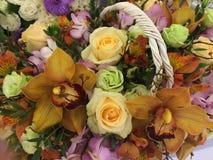 beautiful basket Stock Images
