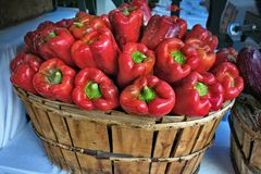 Beautiful basket of red peppers stock image