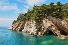 Beautiful bay from natural sea cliffs in. Montenegro. Trees on the rocks stock photography
