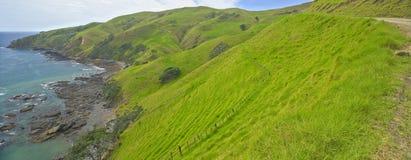 Beautiful bays, Coromandel Peninsula. North Island, New Zealand Stock Photos