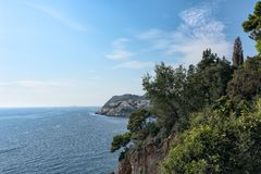 Beautiful beach of the Adriatic sea with the sun and green pine trees stock photos