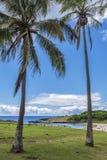 The sea of Anakena between the palms. The beautiful beach of Anakena with the coconut trees and the moai of Ahu Nau Nau royalty free stock photo