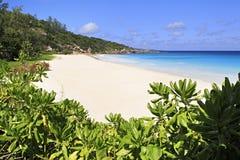 Beautiful beach Anse Petit Stock Photo