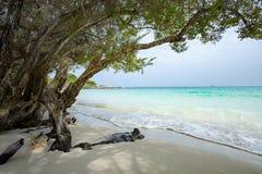 Beautiful beach of Ao Wai Koh Samed sea national park in Rayong Royalty Free Stock Image