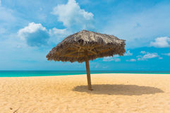 Beautiful beach in Aruba, Caribbean Islands Royalty Free Stock Images