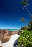 Beautiful beach with big stones and green vegetation Royalty Free Stock Photos
