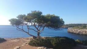 Mallorca blue water beach Stock Images