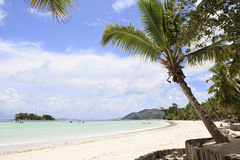Beautiful beach Cote DOr Royalty Free Stock Images