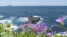 Beautiful beach with deep blue water and light blue sky and nice flower royalty free stock photos