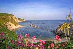 Beautiful beach on of Dorset, UK Royalty Free Stock Photography