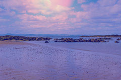 Beautiful beach in the evening Royalty Free Stock Photo