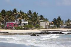 Beautiful beach on Galapagos Isabela island, Ecuador Stock Photography