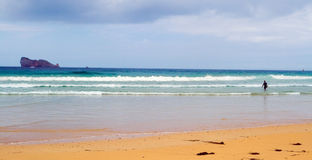 Beautiful beach with good waves for surfing Royalty Free Stock Photos