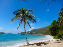 A beautiful beach in the grenadines Royalty Free Stock Photo