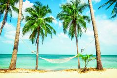 Beautiful beach.  Hammock between two palm trees on the beach. H Stock Images