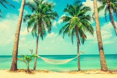 Beautiful beach.  Hammock between two palm trees on the beach. H Royalty Free Stock Photos