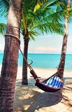 Beautiful beach. Hammock between two palm trees on the beach. Ho Royalty Free Stock Photography