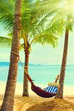 Beautiful beach. Hammock between two palm trees on the beach. Ho Stock Photo