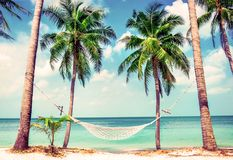 Beautiful beach. Hammock between two palm trees on the beach. Holiday and vacation concept. Tropical beach. Beautiful tropical isl Stock Images