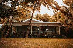 Beautiful beach house with palm trees in the front yard stock photo