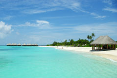 Beautiful beach of island on Maldives Royalty Free Stock Image