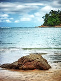 Beautiful beach landscape Royalty Free Stock Photos
