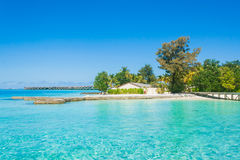 Beautiful beach landscape at Maldives. Stock Photo