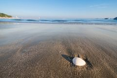 Beautiful beach and little wave with shell and white sand under Stock Photos
