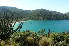 Arraial do Cabo - Beach and Vegetation with a Magnificent Blue Sky in Rio de Janeiro royalty free stock image