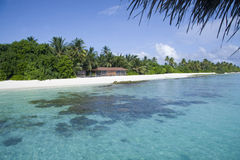 Beautiful beach in maldives Royalty Free Stock Photos
