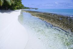 A beautiful beach on maldives Royalty Free Stock Photo