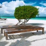 Beautiful beach at Maldives Stock Images