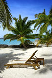 Beautiful beach in the Maldives Stock Image