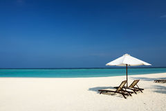 Beautiful beach at Maldives Royalty Free Stock Photography