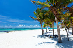 Beautiful beach in Mexico Stock Images