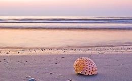 Beautiful beach morning stock photo