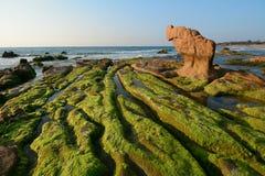 Beautiful beach with moss in Binh Thuan, Vietnam Stock Photo