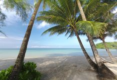 Beautiful Beach oceanfront tropical sea and coconut palm. At koh kood trad Thailand Royalty Free Stock Images