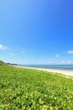 Beautiful beach in Okinawa Stock Image