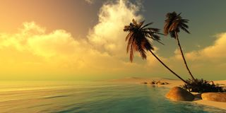 Beautiful beach with palm. Trees at sunset, seascape, sky over the sea stock photo